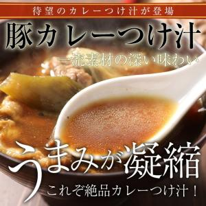 カレーつけ汁|shinjushoku