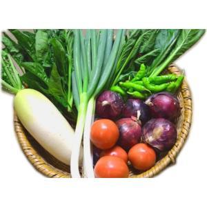 「北信州季節の野菜セット (7〜10種類/2〜4人分:およそ1週間で食べきれる量です)」 【毎週月曜日と木曜日に産地より発送】|shinken-club
