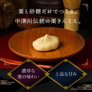 栗きんとん 20個 / 新杵堂の詳細画像4