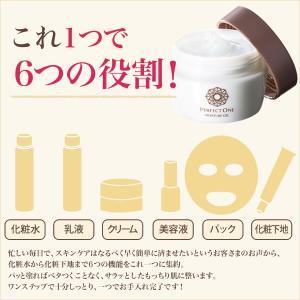 パーフェクトワン モイスチャージェル 75g / 新日本製薬 / オールインワンジェル オールインワンゲル 化粧水 乳液 クリーム 美容液 パック 化粧下地|shinnihonseiyakuec|02