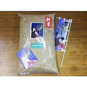 令和2年 佐賀県白石地区産 特別栽培 『七夕コシヒカリ』 5kg|shinozaki-kome