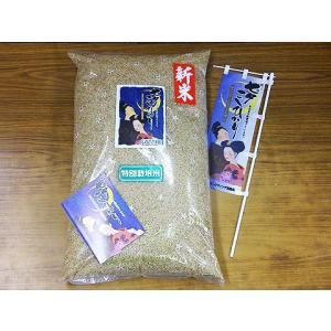 令和2年 佐賀県白石地区産 特別栽培 『七夕コシヒカリ』 3kg|shinozaki-kome