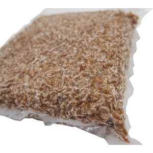 しのざき米店の手作り国産(信州安曇野)小麦麹1kg|shinozaki-kome|02