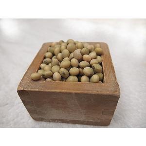 平成29年産 手作り味噌材料 北海道産普通栽培青大豆音更大袖振 1升(1.3kg)|shinozaki-kome