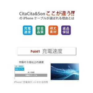 iPhone ケーブル 充電ケーブル 充電器 断線防止 USBケーブル 充電コード iPhone7 iPhone6s iPad 急速充電 対応 長さ1m 交換保証|shinpei00001|04