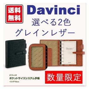 レイメイ藤井 システム手帳 ダヴィンチ グレインレザー ポケットDP607 (ポイント消化) Z