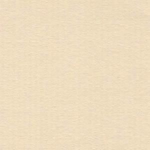 ミューズコットンY目 A4サイズ にゅうはく 薄口 厚み0.17mm A4サイズ 1枚 代引き不可 shinpukue-shop