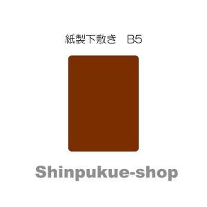 はじめての紙下敷き B5 小学校低学年 代引き不可ポイント消化|shinpukue-shop