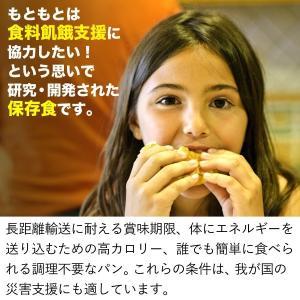 非常食・保存食 パン ライフブレッド|shinrindo|05