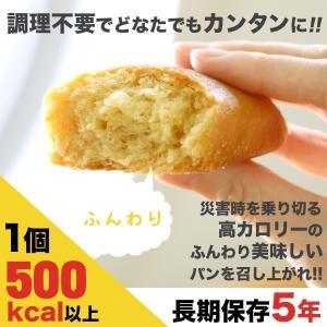 非常食・保存食 パン ライフブレッド|shinrindo|06