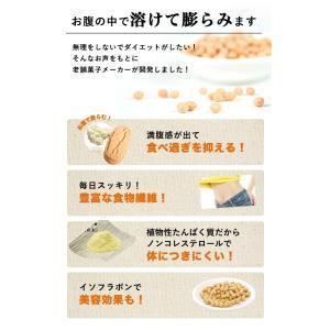 おからパウダー 使用 砂糖不使用   豆乳おからダイエットクッキーバー 50本(1kg)  箱入り 大容量|shinrindo|03