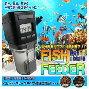自動給餌器 オートフィーダー 観賞魚・熱帯魚用 日本語取説/6ヵ月保証付 FISH FEEDER 金魚 ネオンテトラ グッピー shins