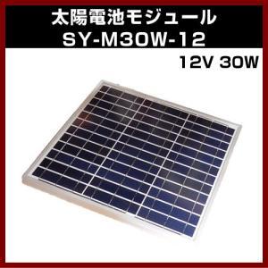 ソーラーパネル M-07394 12V (最大17.2V) 30W SY-M30W-12 太陽電池モジュール 12V/30W 太陽 発電 自作 キット|shins