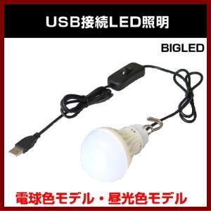 USB接続LED照明 電球色モデル・昼光色モデル TIMELY|shins