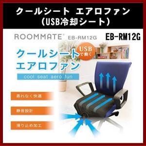 (ROOMMATE) クールシート エアロファン EB-RM12G (USB冷却シート)|shins