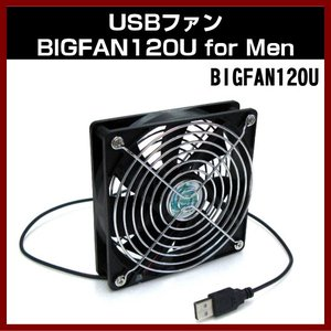 (定形外郵便) TIMELY USBファン BIGFAN120U for Men shins
