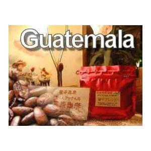 信州珈琲 コーヒー豆 グァテマラ・ウエウエティナンゴ 500gパック約60杯分|shinsyu-coffee