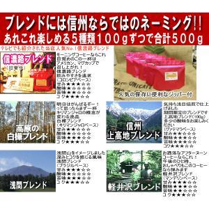 コーヒー豆 焼きたて お試しセット コーヒー 送料無料 5種類合計500g 信州珈琲|shinsyu-coffee|02