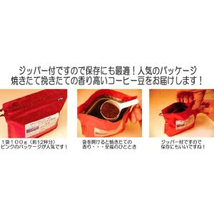 コーヒー豆 焼きたて お試しセット コーヒー 送料無料 5種類合計500g 信州珈琲|shinsyu-coffee|03