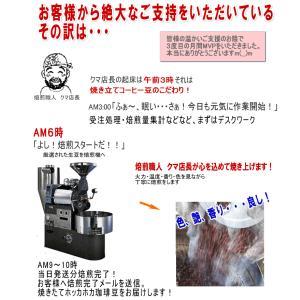 特別 セール コーヒー豆 焼きたて お試しセット コーヒー 送料無料 5種類合計500g 信州珈琲|shinsyu-coffee|07