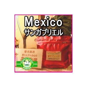 信州珈琲 コーヒー豆 メキシコ サンガブリエル 100gパック約12杯分|shinsyu-coffee