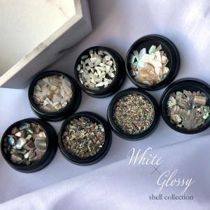 ネイルパーツ ホワイト グロッシーシェルコレクション 6種|shinwa-corp