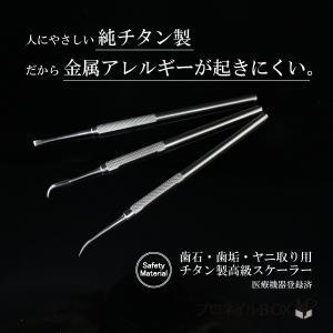 純チタン製 デンタルツール スケーラー 歯石取り 歯垢 ヤニ 除去 高耐久性 金属アレルギー 医療機器|shinwa-corp