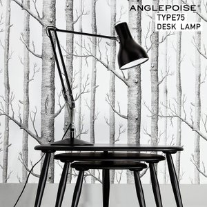 ANGLEPOISE/アングルポイズ Type75 desk lamp タイプ75 デスクランプ イギリス/アームランプ/ワークランプ/Sir Kenneth Grange|shinwashop