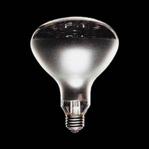 赤外線電球 110V-375W透明|shinyudirect
