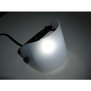 調色用LEDライト SoLED(ソリッド) 専用フロストフィルター (2枚入) shinyudirect