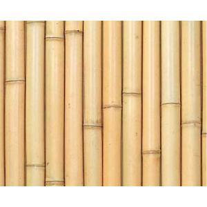 銘竹ボード 晒竹丸竹貼 タテ貼 3×6尺|shioken