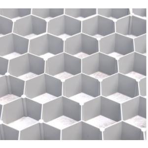 グラベルフィックスプロ 砂利安定材 砂利仕切り枠 住宅庭・駐車場などに 0.9平米/枚|shioken