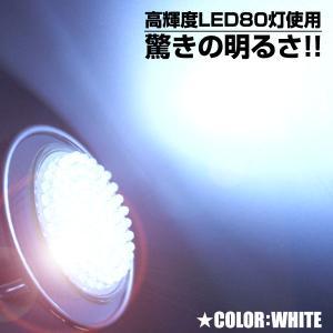 省エネ長寿命 高輝度LED80灯電球 E-26規格 白色光|shioken