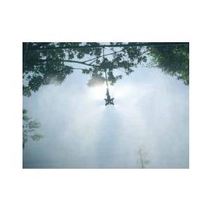 簡易ドライミスト 水道圧タイプ ハンガーセット(ノズル吊り下げ式)四方向ノズル×5|shioken