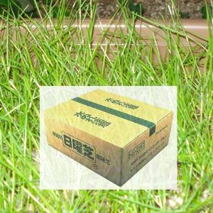 家庭用常緑芝 日曜芝 M(20〜25平方メートル用)|shioken