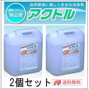 アクトル4L 白華(エフロ)除去剤 テクノクリーン 送料無料2個セット|shioken