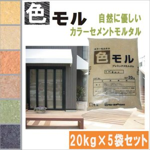 カラーモルタル 色モル カラーセメント 20kg×5袋セット 全6色 shioken