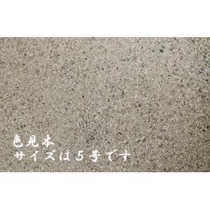 珪砂6号A 30kg|shioken