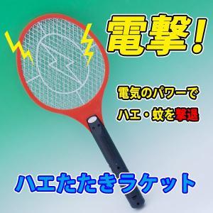 電撃蚊取り・ハエたたきラケット|shioken