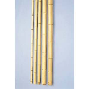 銘竹 晒竹(真竹) 低圧防虫 6.5尺×0.5寸 1本|shioken