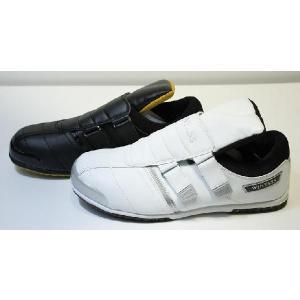 スニーカー安全靴 ウィンタス パルピック#750 shioken