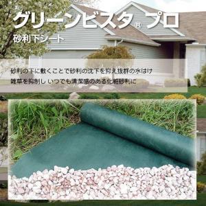 デュポン グリーンビスタ 強力防草シート 1×5m  shioken
