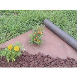 デュポン グリーンビスタ ガーデン用防草シート 1×5m  shioken