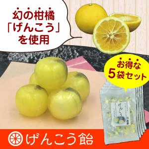 幻の柑橘使用「げんこう飴」 お得な5袋セット(420円/袋)|shioyu-naginoto