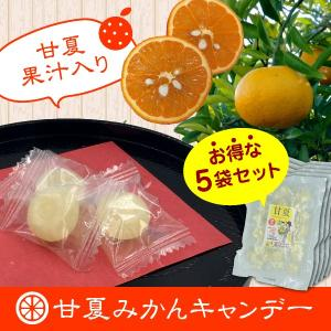 甘夏の果汁入り「甘夏みかんキャンディー」 お得な5袋セット(450円/袋)|shioyu-naginoto