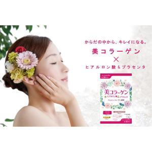 ※美コラーゲン+ヒアルロン酸&プラセンタ/180粒/ワイス