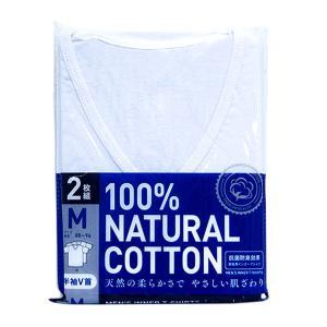 抗菌防臭Tシャツ2枚組(白/半袖V首)/Mサイズ/アイ・フィット工業|shiraishiyakuhin