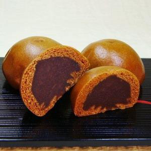 諏訪 温泉饅頭 1パック 10個入 長野 お土産|shirakaba