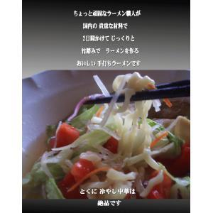ラーメン送料無料 冷やし中華ラーメン  2種類10食セット冷やし中華ごまだれ& 冷し中華レモン風味|shirakawara-men|11