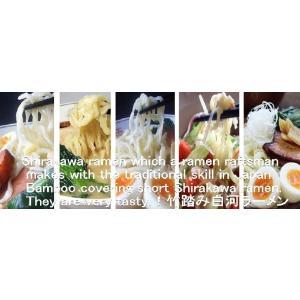 日本三大ラーメン しょう油ラーメン&味噌ラーメン&冷やし中華ラーメン ラーメン10食 送料無料 食べ比べ3種類 醤油4食 みそ3食 冷やし中華ラーメン3食|shirakawara-men|08